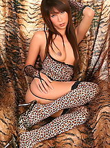 ying ching ching 08 leopard stockings